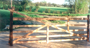 Curved and Heeled Gate